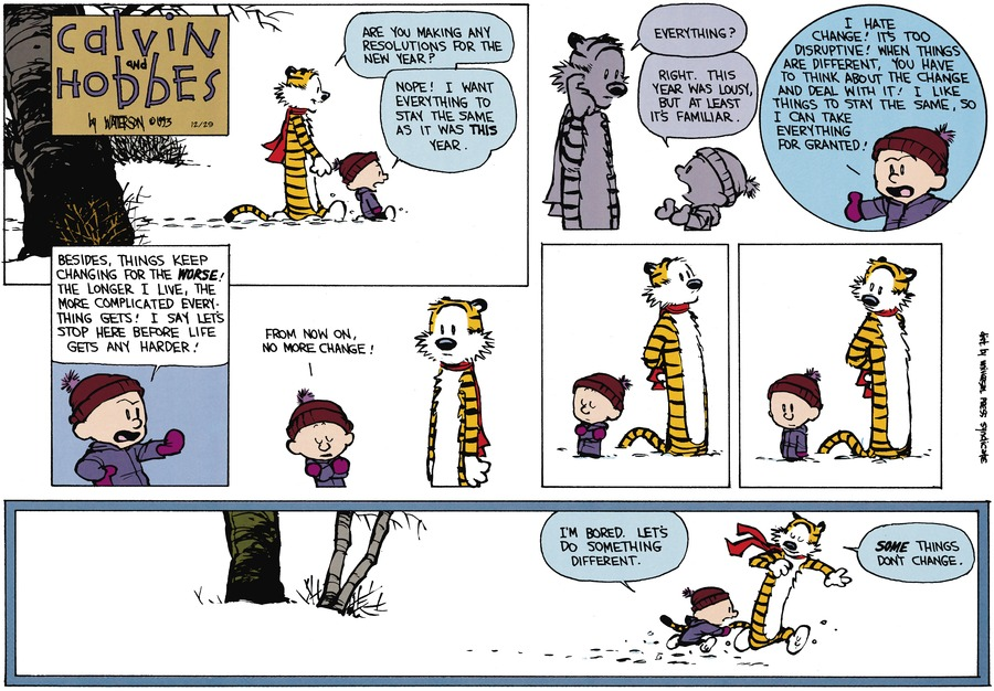 Calvin and Hobbes Comic Strip for December 29, 2013