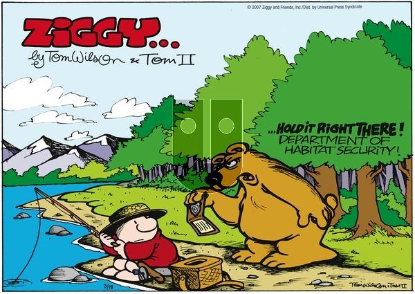 Ziggy on Sunday March 18, 2007 Comic Strip