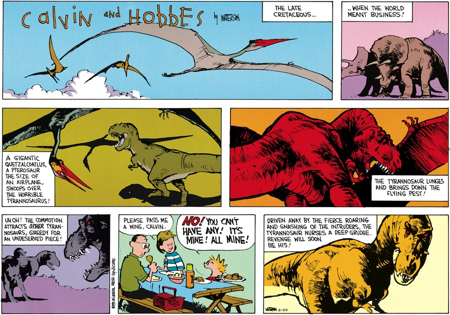 Calvin and Hobbes Comic Strip for June 29, 2014