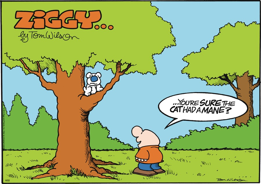 Ziggy Comic Strip for June 22, 2014