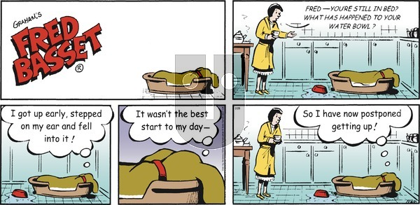 Fred Basset on Sunday February 28, 2021 Comic Strip