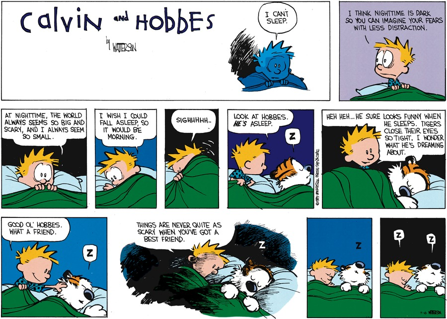 Calvin and Hobbes for Jul 6, 2014 Comic Strip