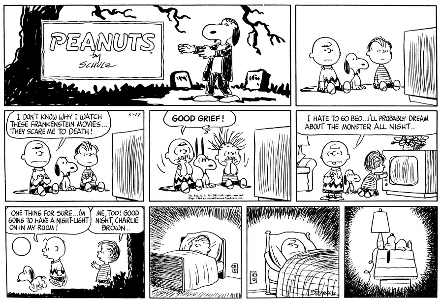 Peanuts Comic Strip for May 17, 1964