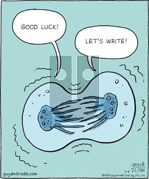 Brevity on Wednesday December 31, 2008 Comic Strip