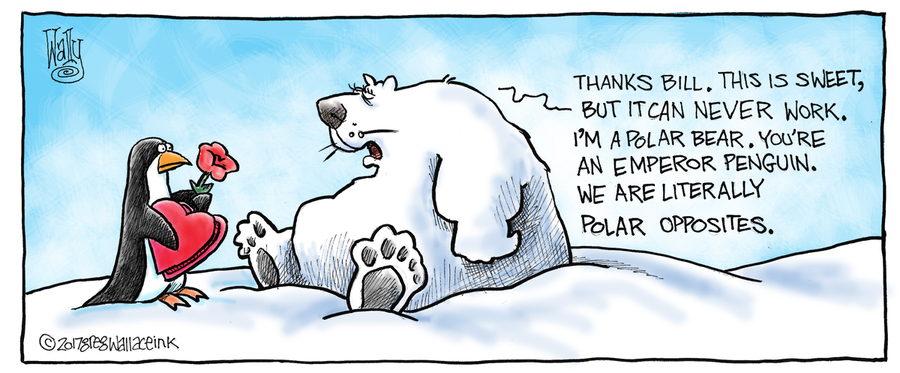 Nothing is Not Something for Feb 17, 2017 Comic Strip