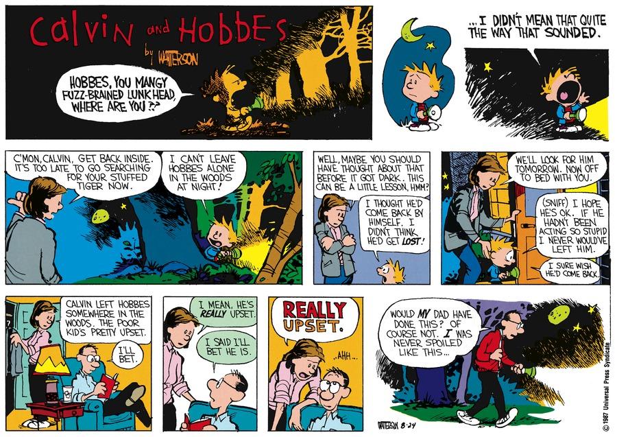 Calvin and Hobbes Comic Strip for September 27, 1987