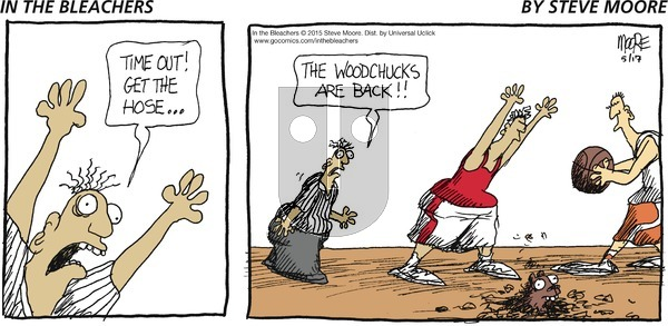 In the Bleachers on Sunday May 17, 2015 Comic Strip