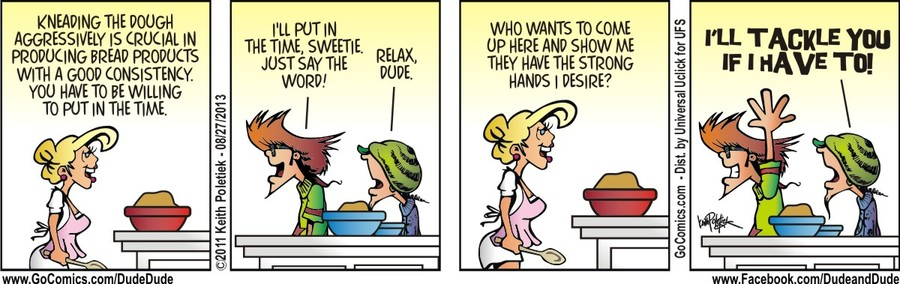 Dude and Dude for Aug 27, 2013 Comic Strip