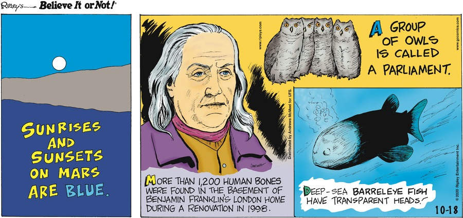 Ripley's Believe It or Not Comic Strip for October 18, 2020