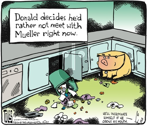 Tom Toles on Sunday May 13, 2018 Comic Strip