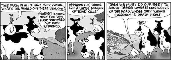 Chicken: This farm is all I have ever known. What's the world out there like, cow?
