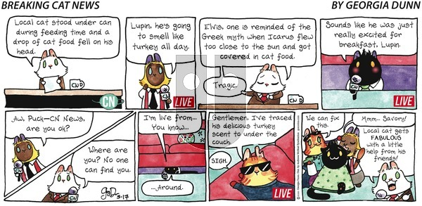Breaking Cat News on Sunday May 17, 2020 Comic Strip