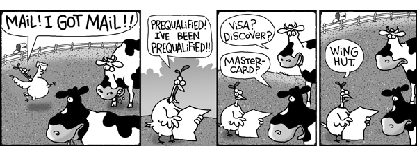 Chicken: Mail! I got mail!! Prequalified! I've been prequalified!! Cow 2: Visa? Discover? Cow 1: MasterCard?  Chicken: Wing hut.