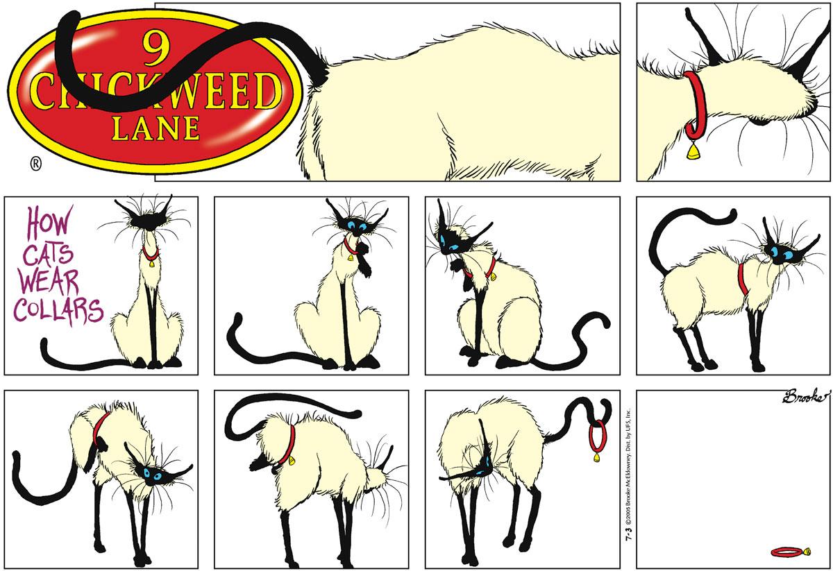 9 Chickweed Lane for Jul 3, 2005 Comic Strip