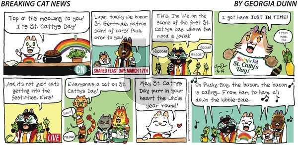 Breaking Cat News on Sunday March 17, 2019 Comic Strip
