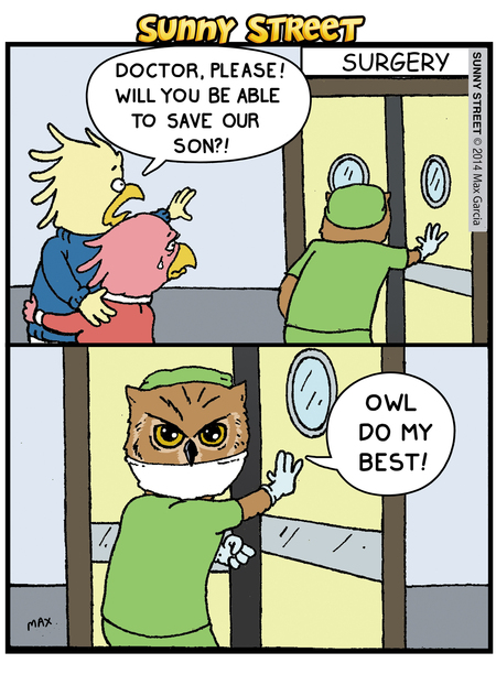 Bird: Doctor, please! Will you be able to save our son?! Doctor: Owl do my best.