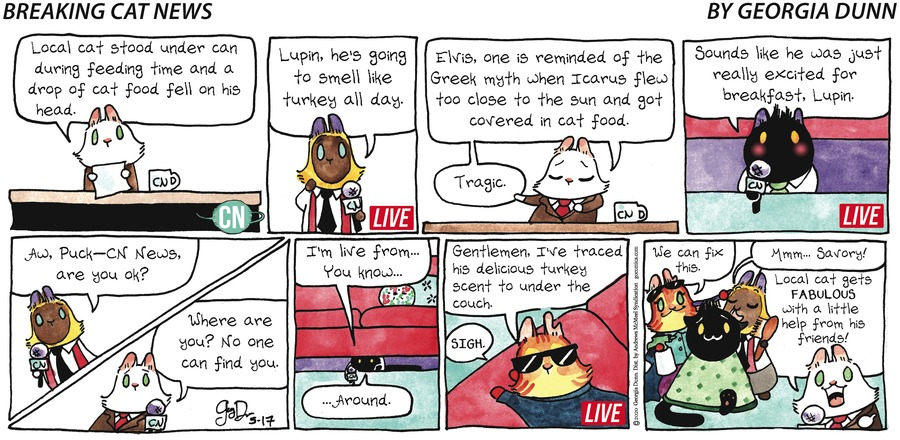 Breaking Cat News Comic Strip for May 17, 2020