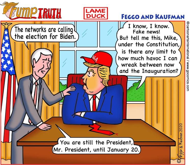 ViewsLatinAmerica Comic Strip for November 08, 2020