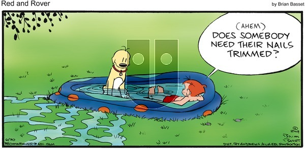 Red and Rover on Sunday June 30, 2019 Comic Strip