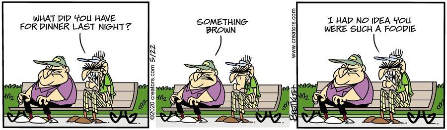 Diamond Lil Comic Strip for May 22, 2020