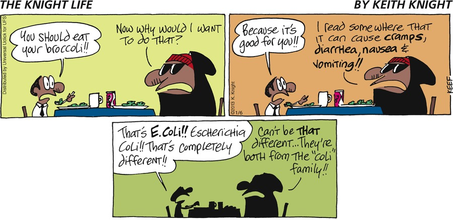 The Knight Life Comic Strip for January 06, 2013
