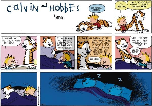 Calvin and Hobbes - Sunday January 13, 1991 Comic Strip