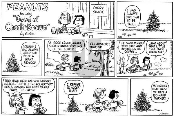 Peanuts on Sunday April 6, 1980 Comic Strip