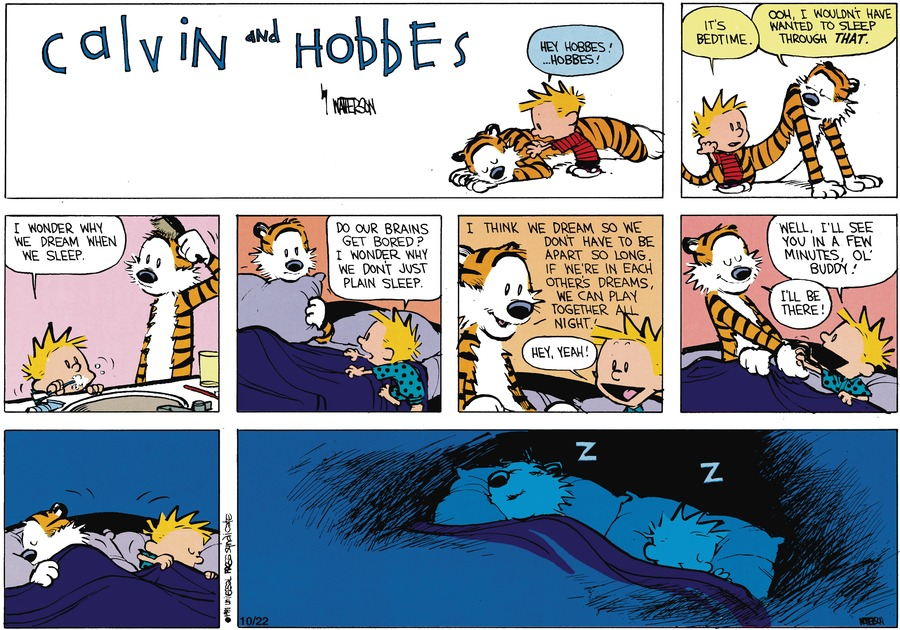 Calvin:  Hey Hobbes!..Hobbes!  It's bedtime.  Hobbes:  Ooh, I wouldn't have wanted to sleep through that. Calvin:  I wonder why we dream when we sleep.  Do our brains get bored?  I wonder why we don't just plain sleep.  Hobbes:  I think we dream so we don't have to be apart so long.  If we're in each other's dreams, we can play together all night.  Calvin:  Hey, yeah!  Well, I'll se you in a few minutes, ol' buddy!  Hobbes:  I'll be there!