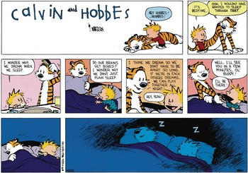 Calvin and Hobbes (January 13, 1991)