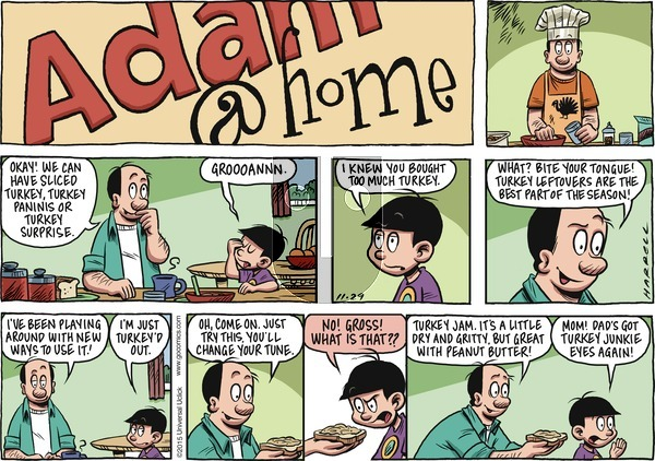 Adam@Home on Sunday November 29, 2015 Comic Strip