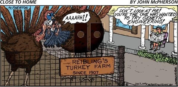 Close to Home on Sunday November 19, 2017 Comic Strip