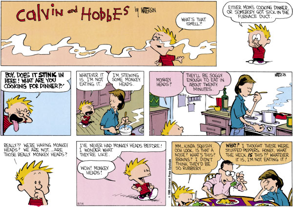 Calvin and Hobbes Comic Strip for August 14, 2011