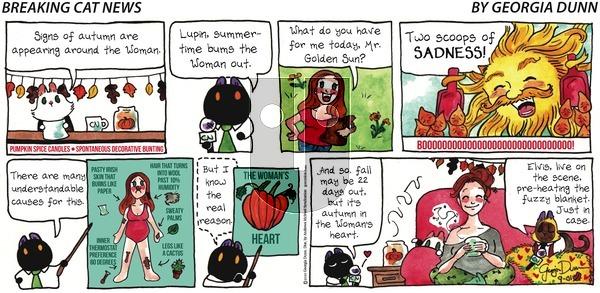 Breaking Cat News - Sunday September 1, 2019 Comic Strip