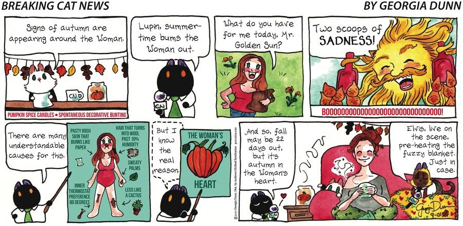 Breaking Cat News Comic Strip for September 01, 2019