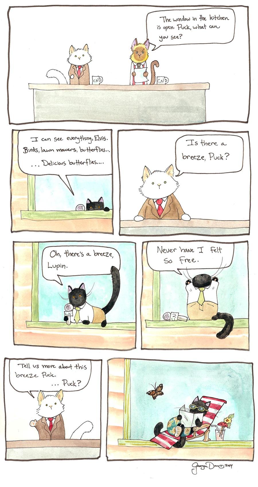 Breaking Cat News Comic Strip for September 18, 2016