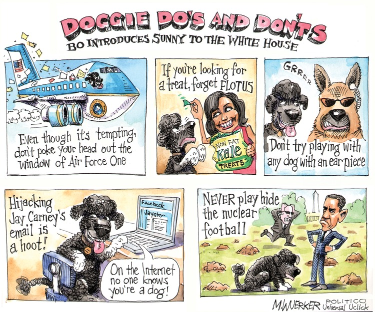 Doggie Do's and Don'ts: Bo introduces Sunny to the White House. Even though it's tempting, don't poke your head out the window of Air Force One. If you're looking for a treat, forget flotus. Don't try playing with any dog with an ear piece. Hijacking Jay Carney's email is a hoot! Never play hide the nuclear football.