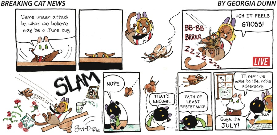 Breaking Cat News Comic Strip for July 30, 2017