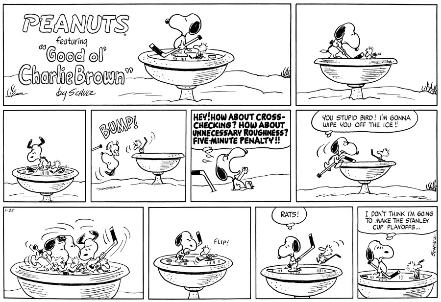 "Snooy stands on a frozen birdbath next to a bird, both are holding hockey sticks. (BR BR) Snoopy and the bird face off on the ice of the bird bath. (BR BR) Snoopy gets ready to hit the puck as the bird comes towards him.  (BR BR)  The bird swings his hockey stick and the puck and Snoopy goes flying off the frozen ice with a BUMP!  (BR BR)  Snoopy sits in the snow looking up, shaking his fists he thinks, ""HEY! HOW ABOUT CROSS-CHECKING? HOW ABOUT UNNECESSATY ROUGHNESS? FIVE-MINUTE PENALTY!!"" (BR BR) Snoopy climbs back up on to the birdbath with a scowl on his face and baring his teeth at the bird as he thinks, ""You stupid bird! I'm gonna wipe you off the ice!!"" The bird stands there and looks up at Snoopy.  (BR BR)  The two go at it on the ice, hitting the Puck back and forth.  (BR BR) Snoopy stops as the puck glides past him as the bird hits it with a flip of the hockey stick.  (BR BR)  Snoopy turns and looks as the puck hits the edge of the birdbath indicating a goal. The bird jumps with joy as Snoopy thinks, ""RATS!""  (BR BR)  Snoopy stands with a frown as he thinks, ""I don't think I'm going to make the Stanley cup playoffs... The bird stands proudly with a big smile.  (BR BR)"