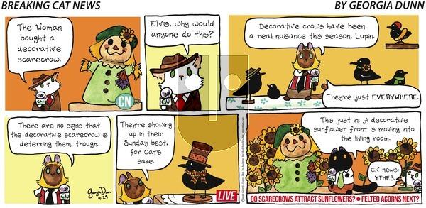 Breaking Cat News - Sunday September 29, 2019 Comic Strip