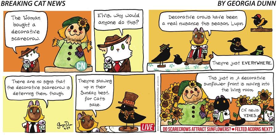 Breaking Cat News Comic Strip for September 29, 2019