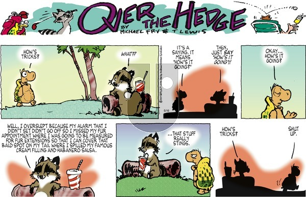 Over the Hedge on Sunday May 16, 2021 Comic Strip