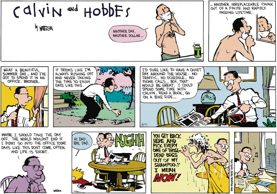 Calvin and Hobbes Comic Strip for July 29, 1990