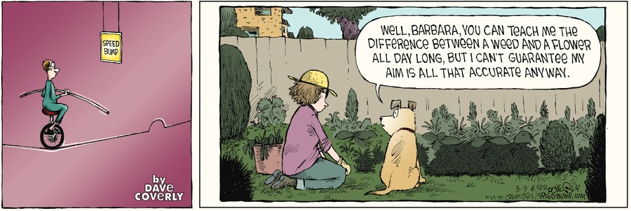 Speed Bump by Dave Coverly on Sun, 09 May 2021