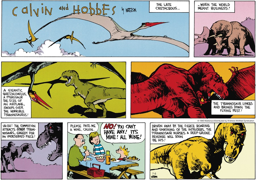 Calvin and Hobbes Comic Strip for July 05, 2020