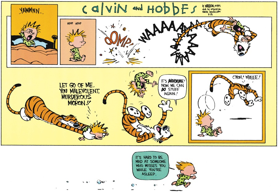 Calvin: Yawnnn.  Let go of me, you malevolent, murderous moron!!  Hobbes: It's morning! Now we can do stuff again! C'mon! Whee! Calvin: It's hard to be mad at someone who misses you while you're asleep.