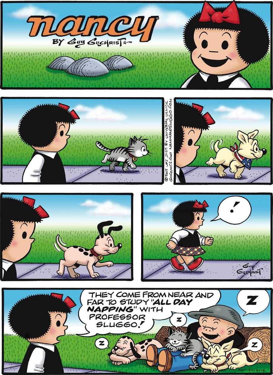 """Caption: nancy By Guy Gilchrist. Nancy: ! They come from near and far to study """"ALL DAY NAPPING"""" with professor Sluggo! Poochie: Z Rocky: Z Sluggo: Z Dog: Z"""