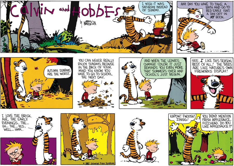 Calvin and Hobbes Comic Strip for October 25, 1987