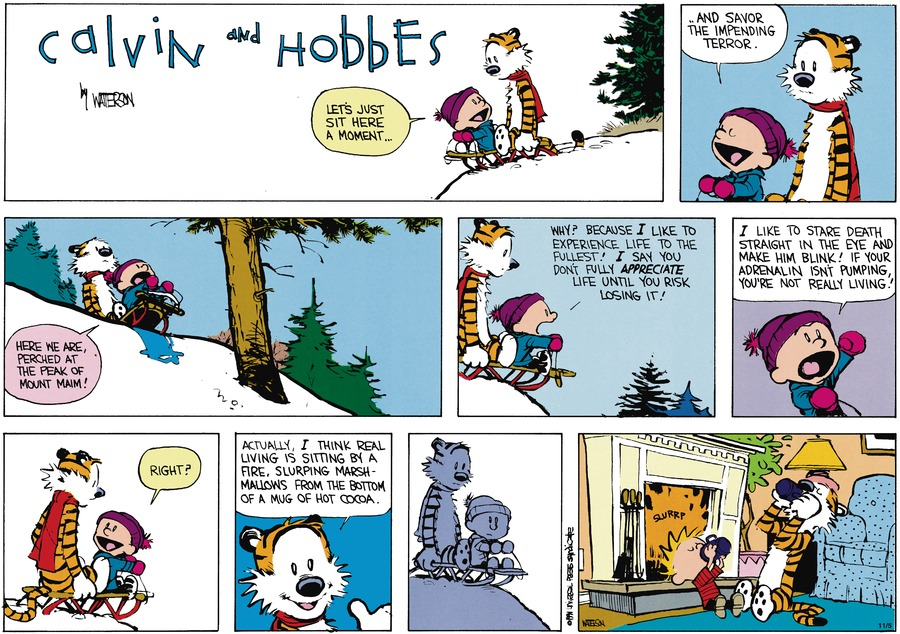 Calvin and Hobbes Comic Strip for January 27, 1991