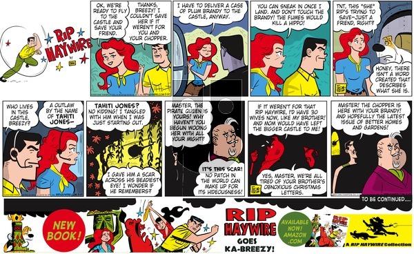 Rip Haywire on Sunday November 29, 2015 Comic Strip