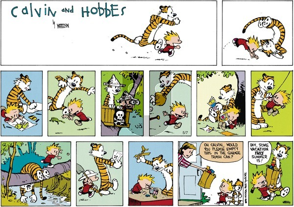 Calvin and Hobbes - Sunday August 7, 1994 Comic Strip